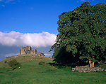 County Tipperary, Ireland   <br /> Rock of Cashel (church and castle dating from the 12th to 15th-century) stands above neighboring pastures