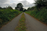 Country lane with grass verges, rarely used road..North Yorkshire. England.