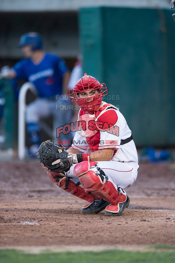 Orem Owlz catcher Griffin Barnes (28) during a Pioneer League game against the Ogden Raptors at Home of the OWLZ on August 24, 2018 in Orem, Utah. The Ogden Raptors defeated the Orem Owlz by a score of 13-5. (Zachary Lucy/Four Seam Images)