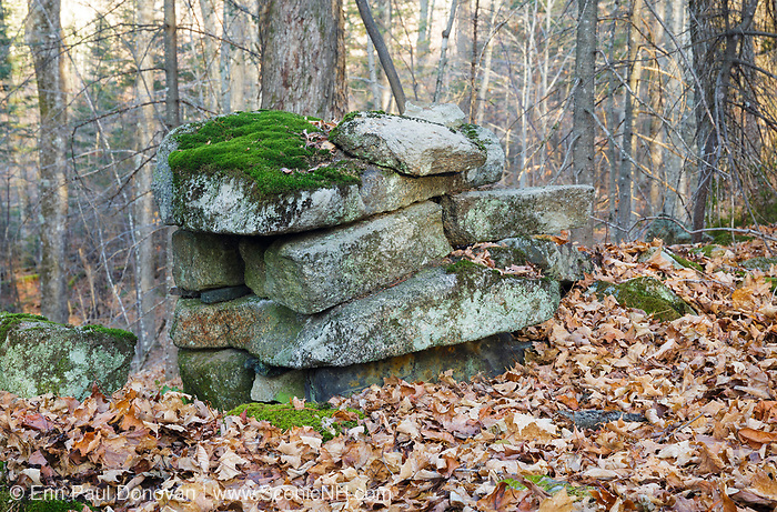 Abandoned stone work along an old road, near the abandoned homestead of Gilbert P. Wright, in Benton, New Hampshire. This road is located off the North and South Road (now Long Pond Road).