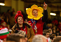 1st February 2020; Millennium Stadium, Cardiff, Glamorgan, Wales; International Rugby, Six Nations Rugby, Wales versus Italy; Wales fans enjoy the atmosphere before kick off