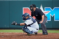 Pulaski Yankees catcher Gabriel Mora (60) frames a pitch as home plate umpire Chandler Durham looks on during the game against the Danville Braves at Calfee Park on June 30, 2019 in Pulaski, Virginia. The Braves defeated the Yankees 8-5 in 10 innings.  (Brian Westerholt/Four Seam Images)