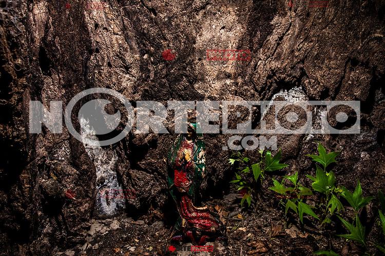 Chapel of the Virgin of Guadalupe in Rancho el Llano, Sierra Los Locos, municipality of San Felipe de Jesus, Sonora, Mexico and Aconchi Sonora, during the Madrean Discovery Expedition (MDE) of the GreaterGood.org MDE organization.<br /> (Photo: Luisgutierrez / NortePhoto.com)<br /> <br /> <br /> Capilla de la virgen de Guadalupe  en el  Rancho el Llano, Sierra Los Locos, municipio de San Felipe de Jesús, Sonora, México y Aconchi Sonora, durante las Expedición Madrean Discovery (MDE)  de la organización GreaterGood.org MDE.<br /> (Photo:Luisgutierrez/NortePhoto.com)