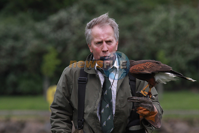 Brian McCann with one of his birds at the Falconary display at the Arts Festival in Dominics park.Pic Fran Caffrey/Newsfile.ie