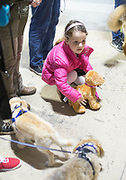 NWA Democrat-Gazette/CHARLIE KAIJO Josephine Potts, 5, of Rogers holds stuffed a animal next to puppies, during a dog show, Saturday, April 21, 2018 at the Rogers Farmer's Market in Rogers.<br />