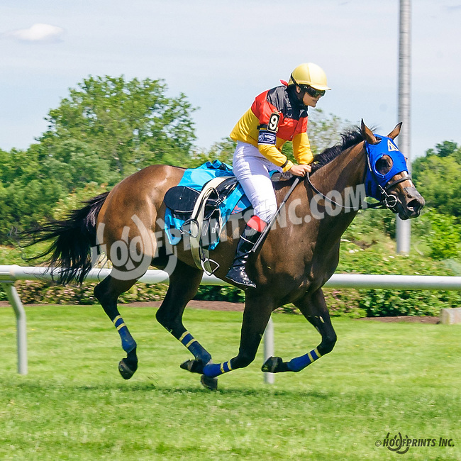 Larissa Biess doing a spectacular job riding Dulce Vida with a slipped saddle in The International Ladies FEGENTRI  race at Delaware Park on 6/13/16