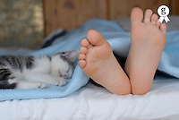 Girl (5-7) lying in bed beside kitten, focus on feet, close-up (Licence this image exclusively with Getty: http://www.gettyimages.com/detail/73532504 )