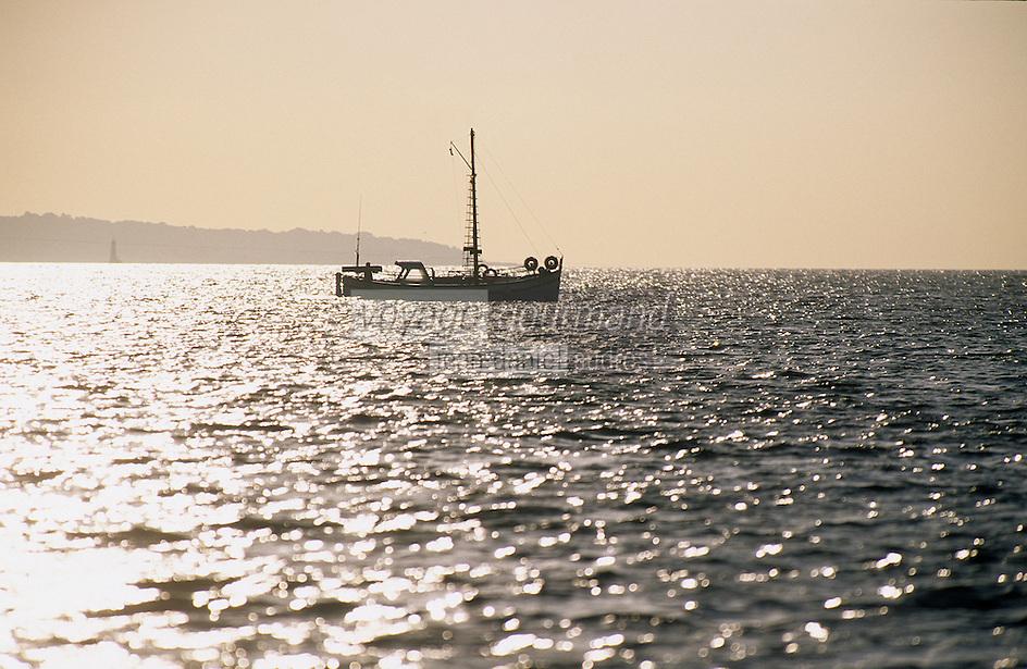 Europe/France/Provence-Alpes-Côte d'Azur/06/Alpes-Maritimes/Cannes: Pointu partant au petit matin pour la pêche à la langouste
