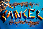 Picture shows the word cancer made out of cigarette ends. Royalty Free