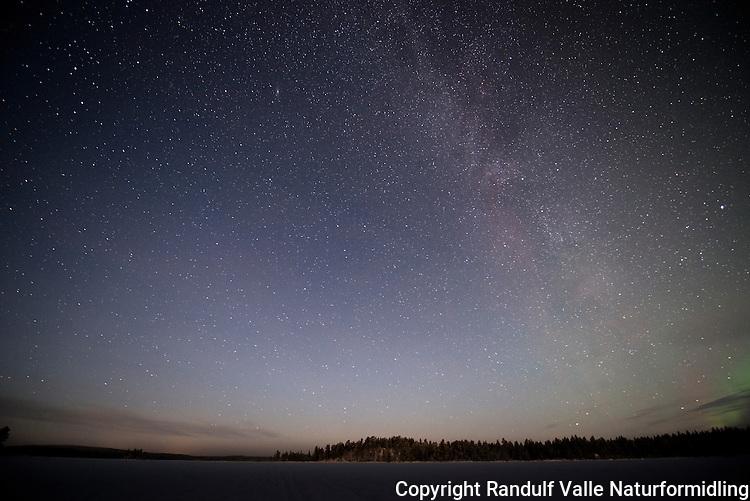 Stjernehimmel med Melkeveien over Ellentjern i Pasvik. ---- Night sky over lake in Pasvik.