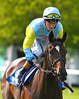 Tolkyn ridden by David Egan goes down to the start of The Smith & Williamson Fillies' Novice Stakes (Class 5))  during Afternoon Racing at Salisbury Racecourse on 17th May 2018