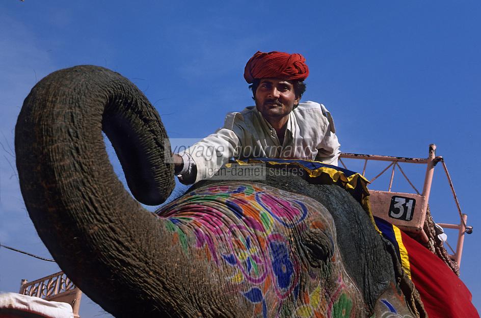 Asie/Inde/Rajasthan/Env de Jaipur/Amber : Les éléphants dans le Palais 16 & 17