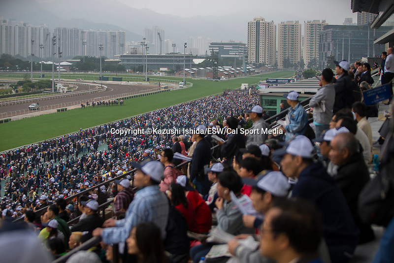 DEC 13,2015:  Track scene at Sha Tin in New Territories,Hong Kong. Kazushi Ishida/ESW/CSM