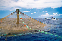 3,000-cubic-meter submersible pen installed in open ocean just off Kona Coast to raise Kona Kampachi, Hawaiian yellowtail, aka almaco jack or kahala, Seriola rivoliana, Kona Blue Water Farms, Big Island, Hawaii, Pacific Ocean