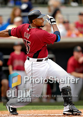 16 March 2007: Houston Astros outfielder Carlos Lee in action against the New York Yankees at Osceola County Stadium in Kissimmee, Florida...Mandatory Photo Credit: Ed Wolfstein Photo