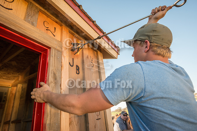 Ty Busi brands the wall with a branding iron.<br /> <br /> The Busi family and friends use hot irons to christen and brand the new pump shed at their corrals near Jackson, California.