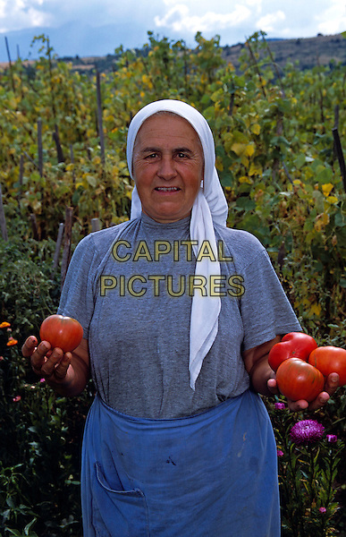 Farmer holding tomatoes in field, Dobarsko, Bulgaria