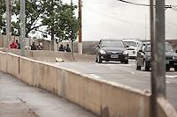 SAO PAULO, SP, 11 DE JANEIRO DE 2012 - CRACOLANDIA - Apos retirada viciados da Alameda Dino Bueno e Rua Helvetia, bairro de Campos Eliseos, centro da cidade, pela Policia Militar, região conhecida como Cracolandia, usuarios de crack sao vistos pelas ruas do centro da cidade. Nesta foto, usuarios sao vistos no viaduto Orlando Murgel, zona central da cidade. Foto Ricardo Lou - News Free