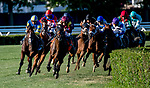 ELMONT, NY - JULY 09: The field turns for home in the Belmont Derby Invitational, eventually won by Catholic Boy (leading in red cap) during Stars and Stripes Racing Festival  at Belmont Park on July 7, 2018 in Elmont, New York. (Photo by Dan Heary/Eclipse Sportswire/Getty Images)