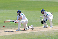 Ravi Bopara of Essex in batting action as Tim Ambrose looks on from behind the stumps during Essex CCC vs Warwickshire CCC, Specsavers County Championship Division 1 Cricket at The Cloudfm County Ground on 20th June 2017