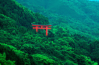 Scenic view of a picturesque Torii (traditional Shinto gateway) on a verdant Japanese hillside in summer. Tsuwano, Japan.