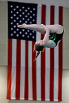 BIRMINGHAM, AL - MARCH 11: Elizabeth Rawlings of Wayne State dives during the Division II Men's and Women's Swimming & Diving Championship held at the Birmingham CrossPlex on March 11, 2017 in Birmingham, Alabama. Rawlings came in second with a score of 485.15. (Photo by Matt Marriott/NCAA Photos via Getty Images)