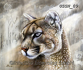 Sandi, REALISTIC ANIMALS, REALISTISCHE TIERE, ANIMALES REALISTICOS, paintings+++++,USSN09,#a#, EVERYDAY ,puzzles