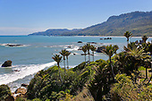 Looking north over Woodpecker Bay, Buller district, West Coast, South Island, New Zealand.