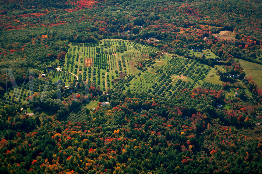 Aerial view of New England farmland with surrounding early fall foliage. Harvard, Massachusetts.