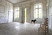 In the stately entrance hall: Stone floor, walls painted white and soft sun light shining in through the windows. Old door slightly ajar with a black dog on guard. Two old wicker chairs Chateau de Cerons (Cérons) Sauternes Gironde Aquitaine France