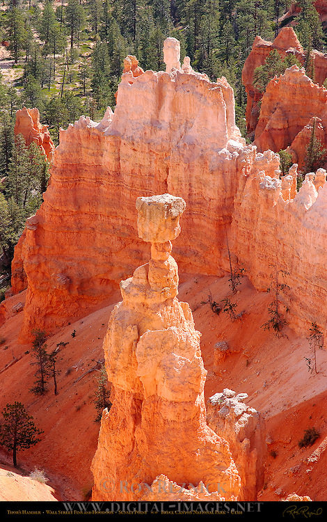 Thor's Hammer and Wall Street Fins and Hoodoos from Sunset Point, Bryce Canyon National Park, Utah