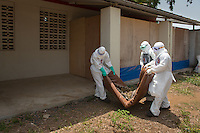 Health care workers, from left, Joseph Walatee, hygienist, Tenneh Kennedy, R.N. and Ben Smith, hygienist supervisor, carry a new patient to the ETU at ELWA II in Monrovia, Liberia on Monday, March 9, 2015. Each is wearing a portrait of themselves on their PPE.<br /> Occidental College professor Mary Beth Heffernan's PPE Portrait Project involves creating wearable portraits of the health care workers who must wear PPE (personal protective equipment) when working with patients.<br /> (Photo by Marc Campos, Occidental College Photographer) Mary Beth Heffernan, professor of art and art history at Occidental College, works in Monrovia the capital of Liberia, Africa in 2015. Professor Heffernan was there to work on her PPE (personal protective equipment) Portrait Project, which helps health care workers and patients fighting the Ebola virus disease in West Africa.<br />