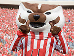 MADISON, WI - SEPTEMBER 29: Mascot Bucky Badger of the Wisconsin Badgers cheers during the game against the Michigan State Spartans at Camp Randall Stadium on September 29, 2007 in Madison, Wisconsin. The Badgers beat the Spartans 37-34. (Photo by David Stluka)