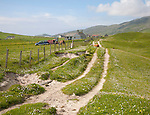 Machair grassland and croft houses on Vatersay island, Barra, Outer Hebrides, Scotland, UK