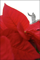 White statue of Mao and red plant leaves in a cloudy day.<br /> A reminder of old Chinese Cultural Revolution propaganda images of sea of red flags.