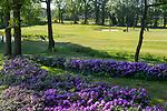 WINTERSWIJK -  Hle 2. Golf & Country Club Winterswijk, golfbaan De Voortwisch.     COPYRIGHT  KOEN SUYK