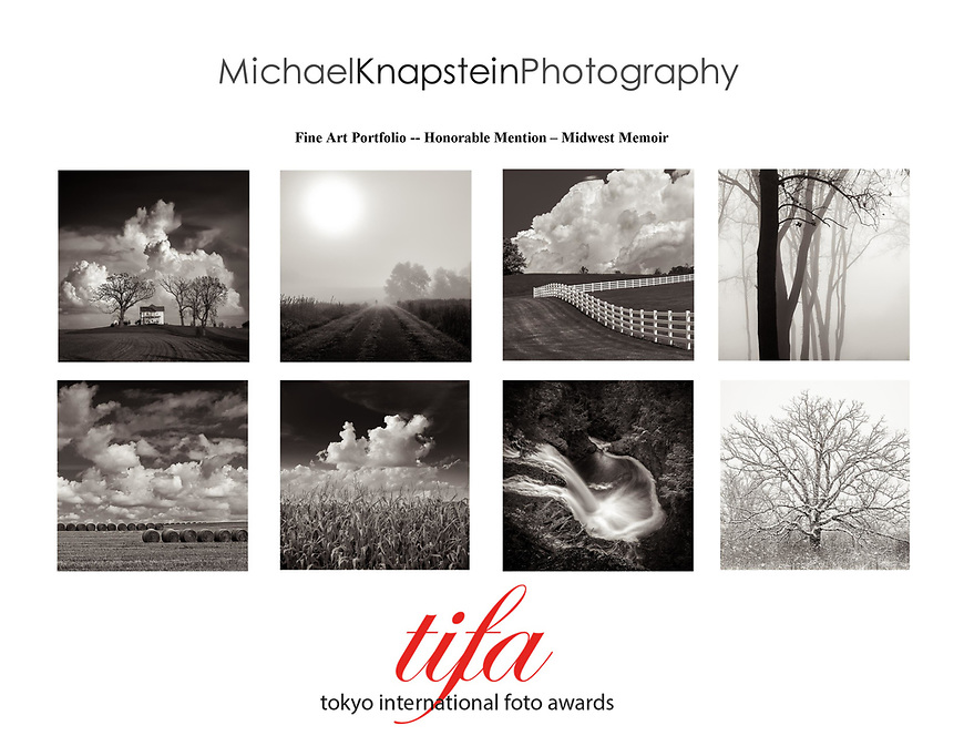 A series of 8 photographs by Michael Knapstein won Honorable Mention for Fine Art Portfolio in the Tokyo International Foto Awards.