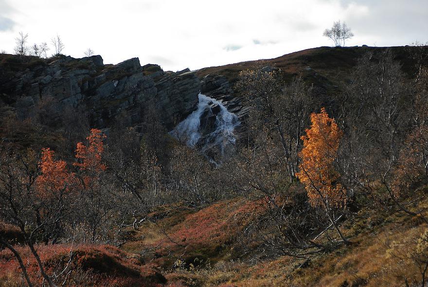 Autumn,Forollhogna,Norway Landscape, landskap,