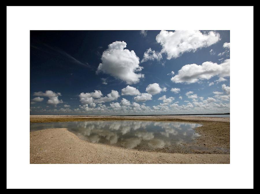 Everglades, Florida.  © Andrew Shurtleff
