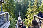Capilano Suspension Bridge, Vancouver, British Columbia, Canada