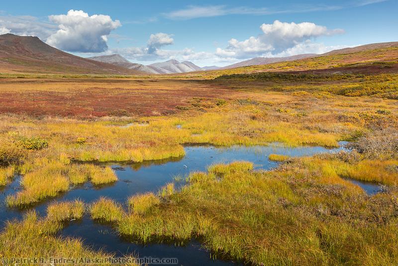 Seward peninsula, Alaska.