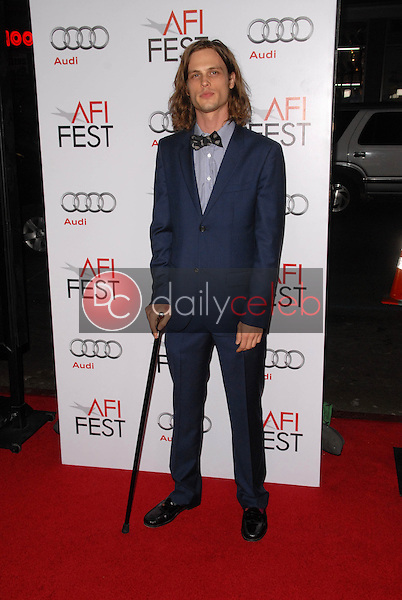 Matthew Gray Gubler<br />at the Los Angeles Screening of 'Fantastic Mr. Fox' for the opening night of AFI Fest 2009. Grauman's Chinese Theatre, Hollywood, CA. 10-30-09<br />Dave Edwards/DailyCeleb.com 818-249-4998