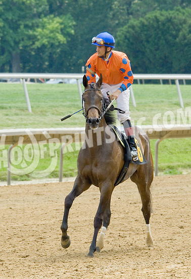 Merryland Moon winning at Delaware Park on 5/26/12