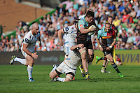 Jack Clifford of Harlequins charges upfield during the Aviva Premiership match between Harlequins and Exeter Chiefs at The Twickenham Stoop on Saturday 7th May 2016 (Photo: Rob Munro/Stewart Communications)