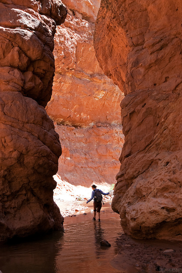 A hiker heads through the narrow canyons of Sulphur Creek's Goosenecks, in Capitol Reef National Park, Utah.
