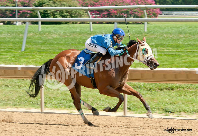 Barracuda Wayne winning at Delaware Park on 8/25/14