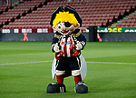 Captain Blade during the Premier League match at Bramall Lane, Sheffield. Picture date: 5th December 2019. Picture credit should read: Simon Bellis/Sportimage