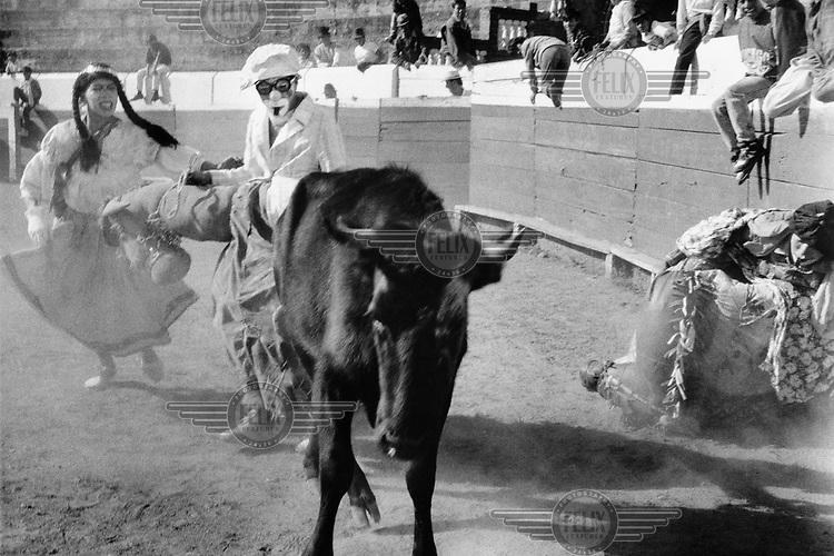 Clowns participating in the popular sport of bull taunting. The bulls are never killed but injuries to the people are frequent.