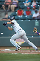 Luke Wakamatsu (12) of the Lynchburg Hillcats lays down a bunt against the Winston-Salem Dash at BB&T Ballpark on May 3, 2018 in Winston-Salem, North Carolina. The Dash defeated the Hillcats 5-3. (Brian Westerholt/Four Seam Images)