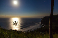Moonrise over a black sand beach as viewed from the cliffs of Pololu Valley, Big Island.